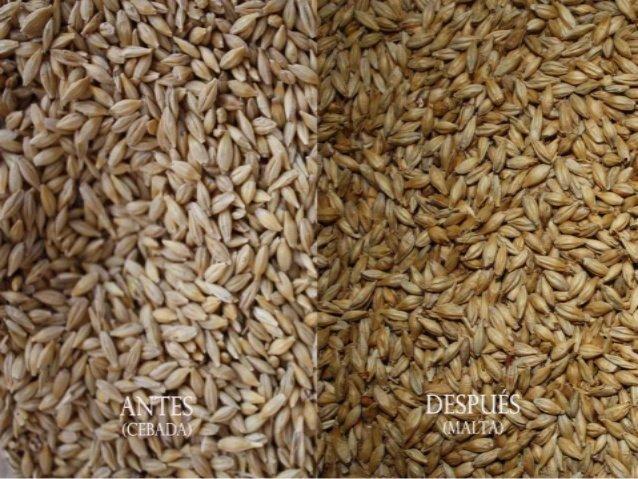Antes y después del malteado